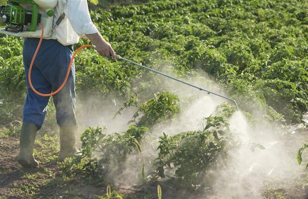 Утилизация пестицидов